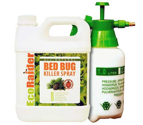 1-Eco-Raider-Best-Bed-Bug-K