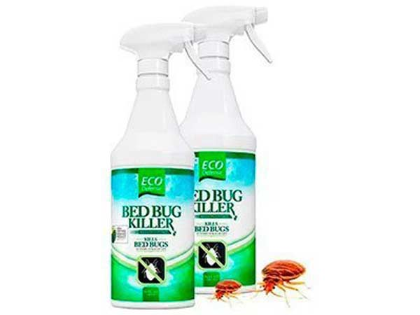 2-Eco-Defense-Best-Bed-Bug-