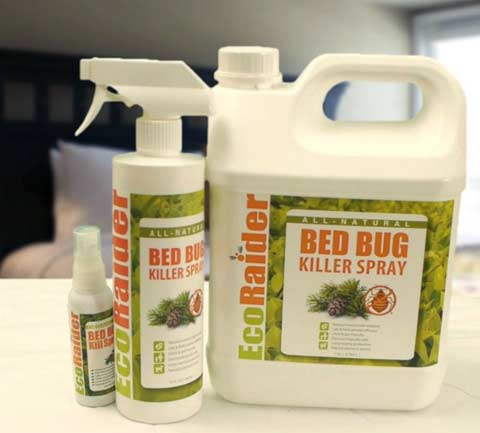 2-Eco-Raider-Best-Bed-Bug-K